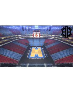 Basketball Arena V2